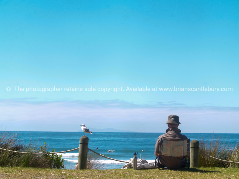 "Mount Maunganui, New Zealand, a summers day at the beach. Surf, people, outdoors, man in hat, and seagull. Tauranga is New Zealands 5th largest city and offers a wonderfull variety of scenic and cultural experiences . Tauranga stock images Tauranga scenics. - 9<br /> Model released; no. Editorial and personal use only See;  <a href=""http://www.blurb.com/b/3811392-tauranga"">http://www.blurb.com/b/3811392-tauranga</a> mount maunganui landscape photography, Tauranga Photos; Tauranga photos, Photos of Tauranga Also see; <a href=""http://www.brianscantlebury.com/Events"">http://www.brianscantlebury.com/Events</a>"
