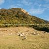 Mount Maunganui April 13-128