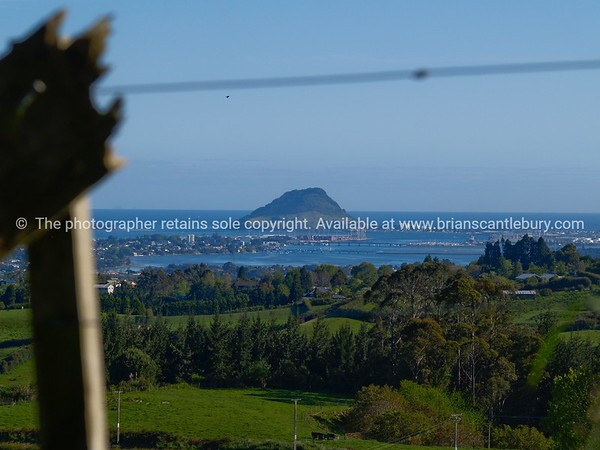 """Tauranga scenics.<br /> <br /> Mount Maunganui, fence and farmland in foreground. Tauranga is New Zealands 5th largest city and offers a wonderfull variety of scenic and cultural experiences. Tauranga stock images Tauranga scenics. See;  <a href=""""http://www.blurb.com/b/3811392-tauranga"""">http://www.blurb.com/b/3811392-tauranga</a> mount maunganui landscape photography, Tauranga Photos; Tauranga photos, Photos of Tauranga Also see; <a href=""""http://www.brianscantlebury.com/Events"""">http://www.brianscantlebury.com/Events</a>"""