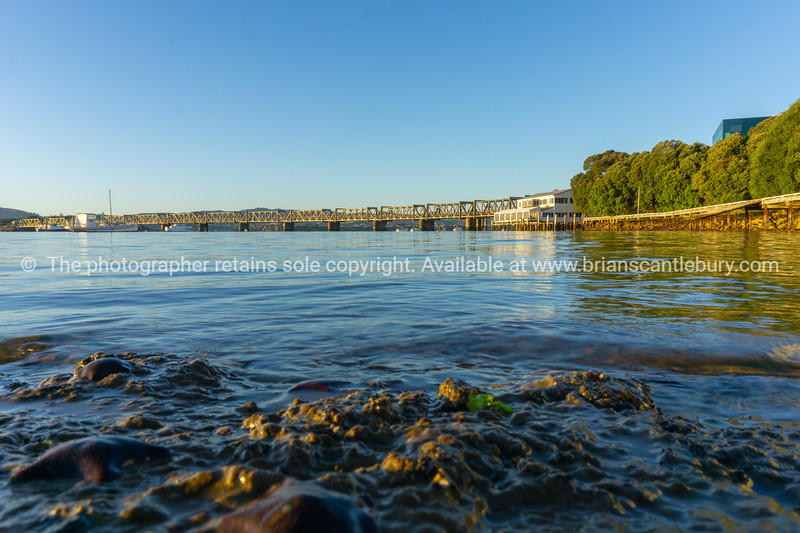 Tauranga Strand water's edge and Railway bridge catches glow from sunrise in distance across  blue calm water in low level background image