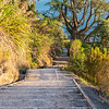 Pathway up and down Mount Maunganui, one of country's most popular walks, Tauranga