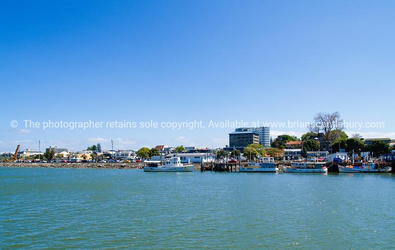 Harbour shots0710 (3)
