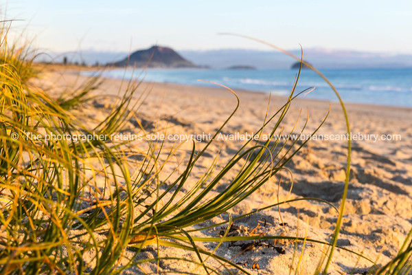Papamoa at sunrise looking toward the Mount at end of beach