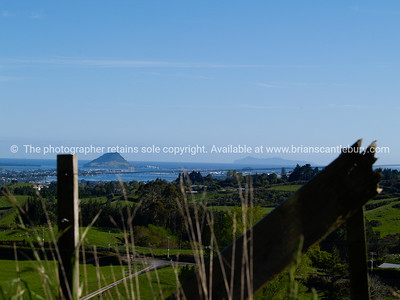 Tauranga scenics.  Bay of Plenty, Mount Maunganui in the distance. Tauranga is New Zealands 5th largest city and offers a wonderfull variety of scenic and cultural experiences. Tauranga stock images Tauranga scenics. See; www.blurb.com/b/3811392-tauranga mount maunganui landscape photography, Tauranga Photos; Tauranga photos, Photos of Tauranga Also see; http://www.brianscantlebury.com/Events