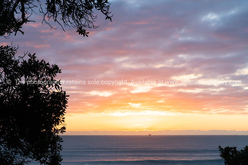 bright sunrise across ocean framed by silhouette trees from Mount Maunganui Base Track