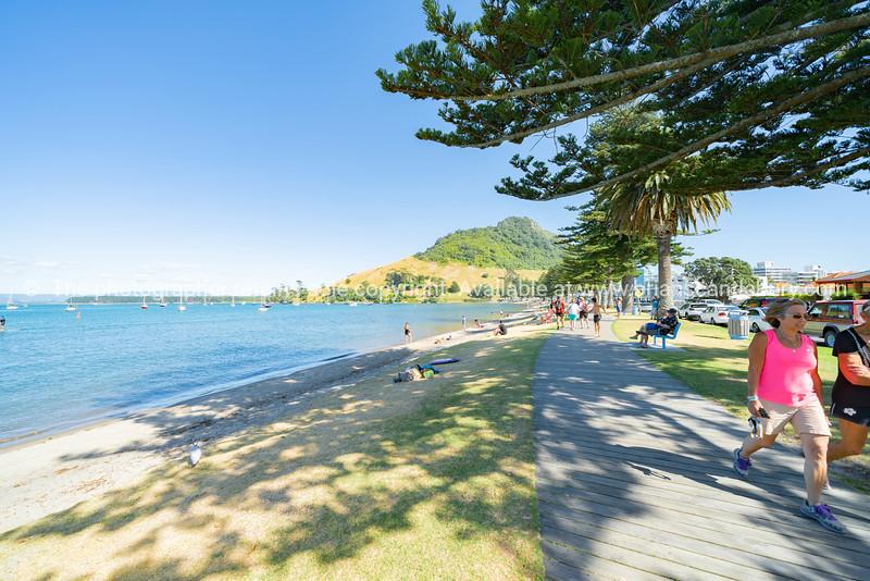 Tourists wander along scenic Pilot Bay