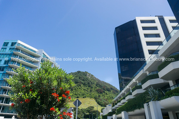 Street view, maunganui Road between apartment buildings with landmark Mount Maunganui