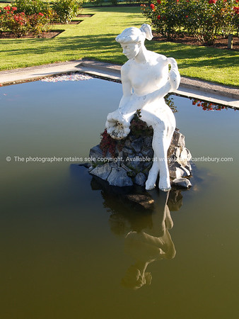 Tauranga scenics.  White statue of lady, sitting and reflected in a garden pond. Tauranga is New Zealands 5th largest city and offers a wonderfull variety of scenic and cultural experiences. Tauranga stock images Tauranga scenics. See; www.blurb.com/b/3811392-tauranga mount maunganui landscape photography, Tauranga Photos; Tauranga photos, Photos of Tauranga Also see; http://www.brianscantlebury.com/Events