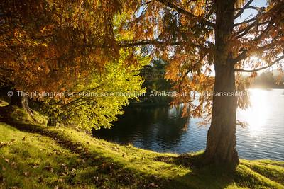 McLaren Falls Park-17