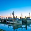 Tauranga Fishermans Wharf