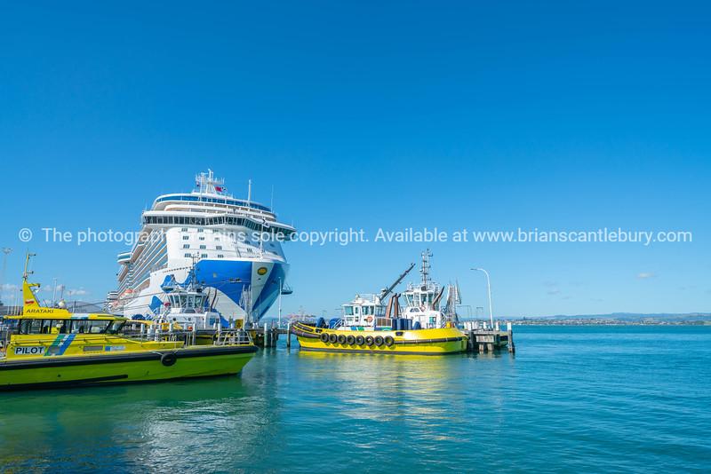 Port of Tauranga pilot boats and large cruise liner berthed at Mount Maunganui wharf