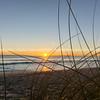 Papamoa beach, thorugh the marram  looking into sunrise