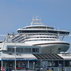 Cruise ship towers over Salisbury Wharf shop and restaurant.