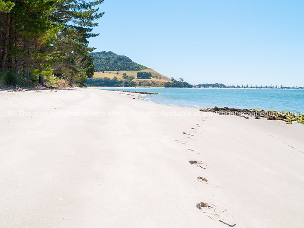 Footprints in Matakana Island sand with Mount Maunganui in distance.