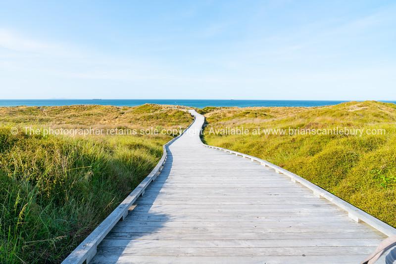 Wooden walkway through dunes to sea