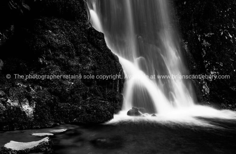 Tauranga, McLaren Falls Park (67 of 89)