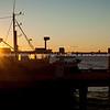 Fishermans Wharf at sunrise, Tauranga waterfront.