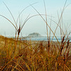 Papamoa beach, thorugh the marram to Mount Maunganui