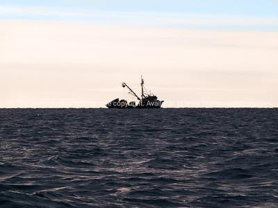 Fishing boat  San Columbia , ZMA 2925 on horizon of the coast of Tauranga..