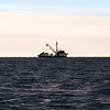 Fishing boat  San Columbia , ZMA 2925 on horizon of the coast of Tauranga..