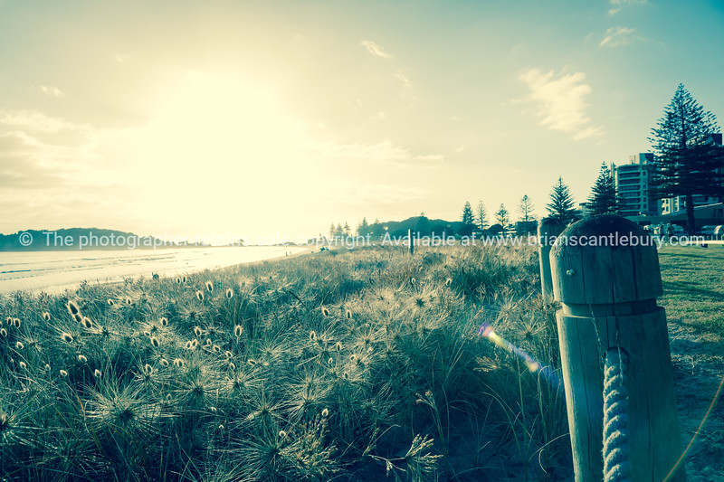 Sun bursts above horizon in filtered effect back-lighting the dunes and bollards up on beach Mount Maunganui,New Zealand