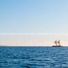 Maori sailing waka of Tauranga coast.