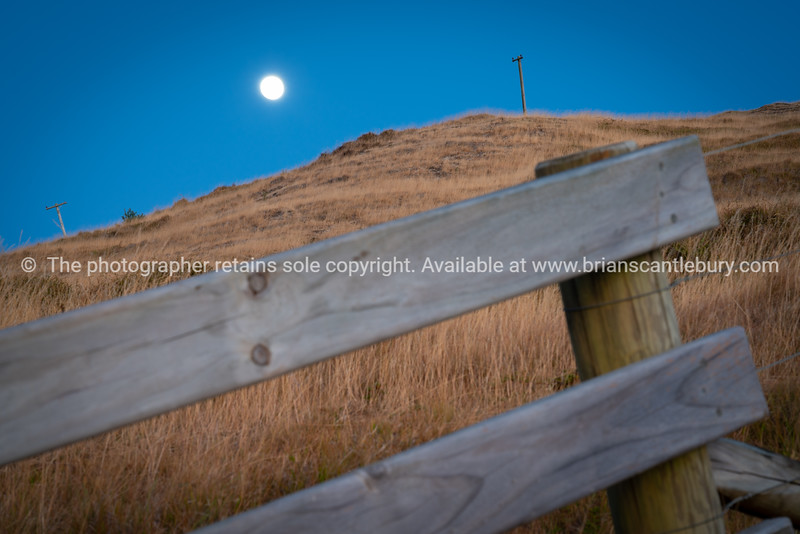Dry grass on slope of Mount Maunganui and moon.