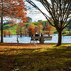 Woman and three children sitting and playing by edge of scenic lake under trees in autumn