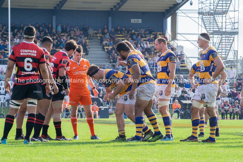 Rugby at Tauranga Domain