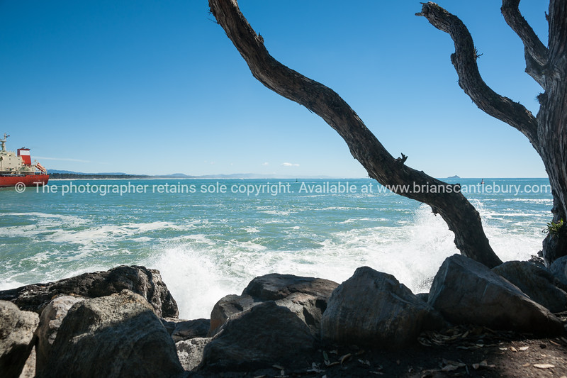 Branches of pohutukawa and foreground rocks silhouette against sea and stern of ship entering Tauranga harbour