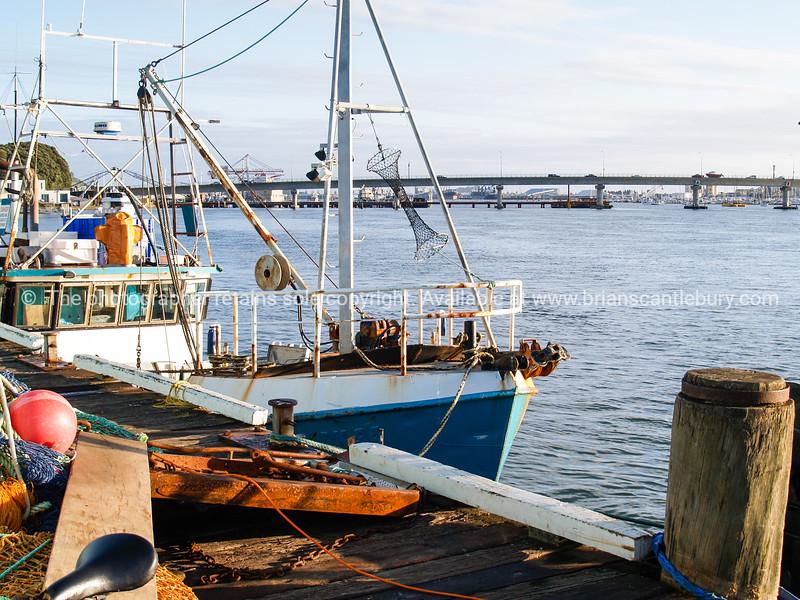 Fishing wharf on Dive Crescent, with Tauranga Harbour Bridge.