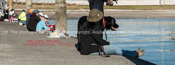 """Fishing with dog.<br /> <br /> Model released; no. Editorial and personal use only See;  <a href=""""http://www.blurb.com/b/3811392-tauranga"""">http://www.blurb.com/b/3811392-tauranga</a> mount maunganui landscape photography, Tauranga Photos; Tauranga photos, Photos of Tauranga Also see; <a href=""""http://www.brianscantlebury.com/Events"""">http://www.brianscantlebury.com/Events</a>"""