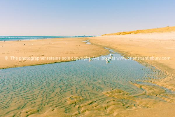 Split Tone beach image