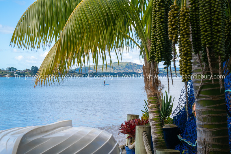 Tropical garden frames view over white clinker dinghy to bay with standup paddleboarder in distance.
