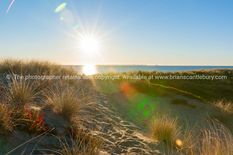 Lens flare created over sea and sand dune at Papamoa beach