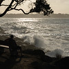 Through trees view of storm waves crashing into rocky foreshore at base of Mount Maunganui.