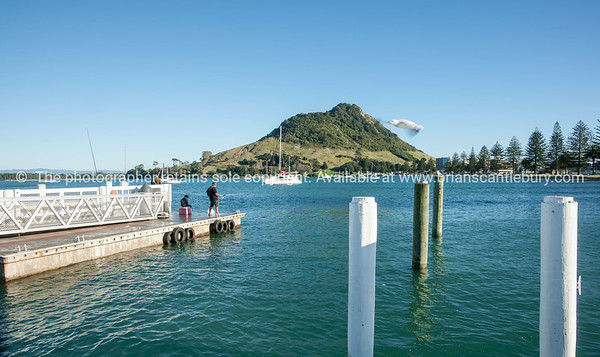 Mount from Salisbury Wharf, Mount Maunganui