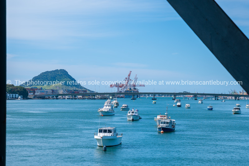 Landmark Mount Maunganui with Port of Tauranga container cranes, harbour bridge and moored boats from railway bridge framed by steel bridge structure.