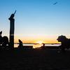 Hairy Mclary animal statues on Tauranga city waterfront