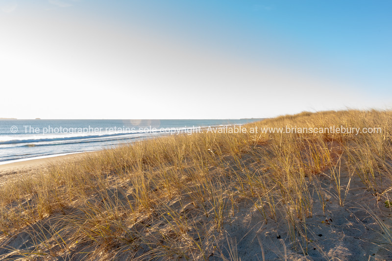 Golden morning on Papamoa Beach dunes and sea