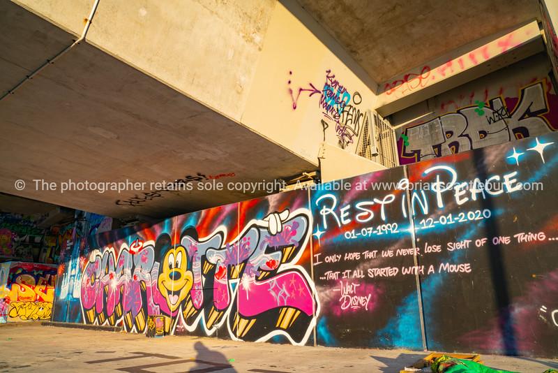 Tauranga street art