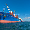 Cargo ship in Port of Tauranga