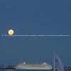 Moonlight on Tauranga Harbour