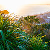 From the summit of Mount Maunganui at daybreak golden glow of rising sun, distant horizon and long leading coastline of Bay of Plenty