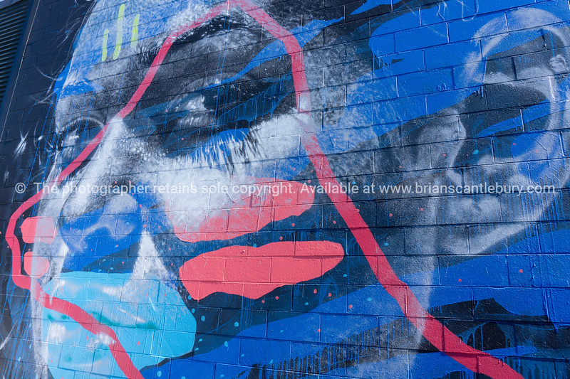 Street art 11 & 13 Totara Street Mount Maunganui. Model/Property Released; No, for personal & editorial use only.