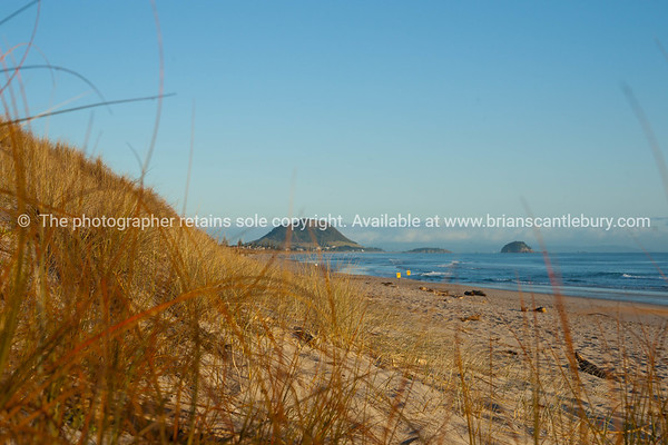 Papamoa beach scene