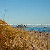 Papamoa beach scenes