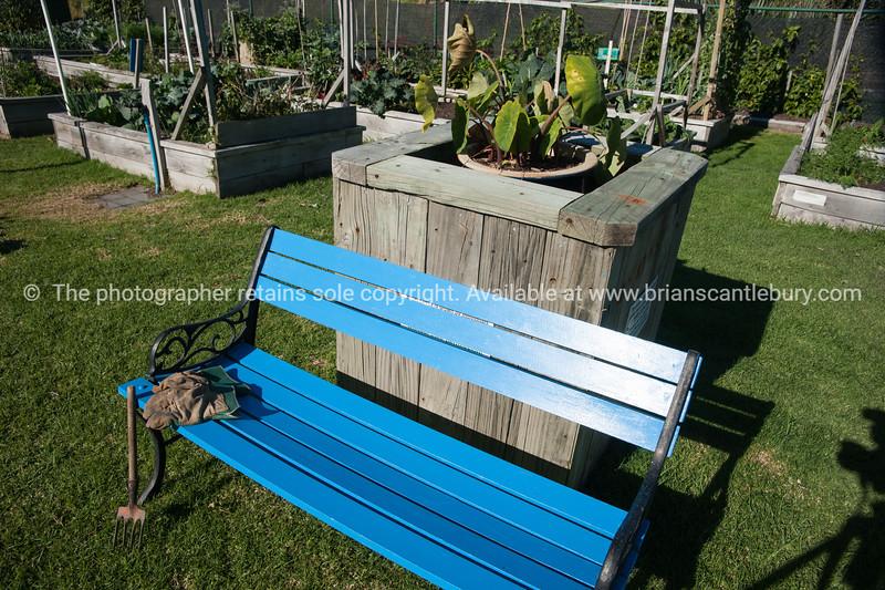 "Seat in Community garden, Otumoetai, Tauranga. See;  <a href=""http://www.blurb.com/b/3811392-tauranga"">http://www.blurb.com/b/3811392-tauranga</a> mount maunganui landscape photography, Tauranga Photos; Tauranga photos, Photos of Tauranga Also see; <a href=""http://www.brianscantlebury.com/Events"">http://www.brianscantlebury.com/Events</a>"