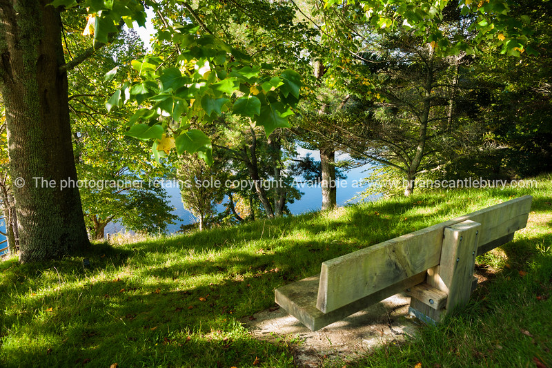 """Park bench in filtered light of leafy trees at McLaren Falls Park Reserve, See;  <a href=""""http://www.blurb.com/b/3811392-tauranga"""">http://www.blurb.com/b/3811392-tauranga</a> mount maunganui landscape photography, Tauranga Photos; Tauranga photos, Photos of Tauranga Also see; <a href=""""http://www.brianscantlebury.com/Events"""">http://www.brianscantlebury.com/Events</a>"""