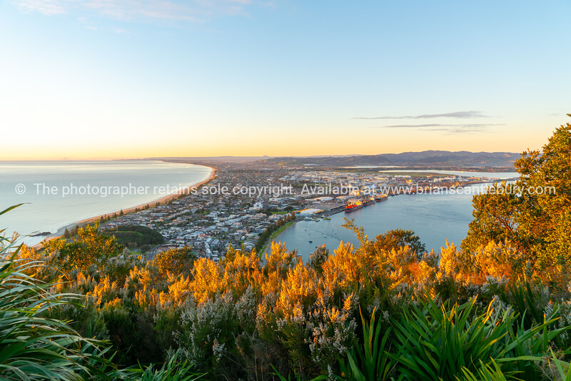 Glow of sunrise over sea and across town below and slopes of Mount Maunganui